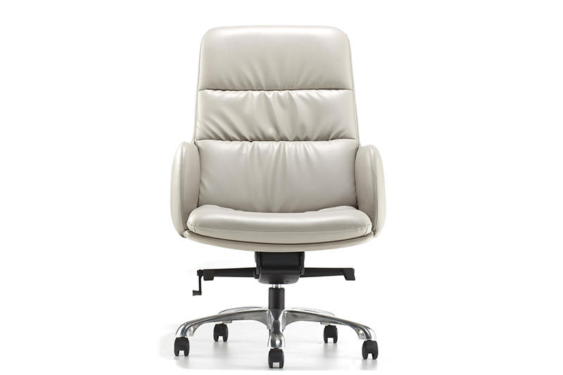 Comfortable Executive Chair BINZ OFFICE CHAIR