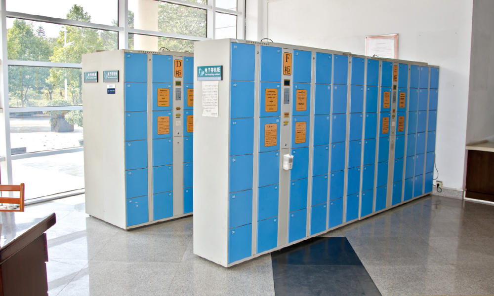 Electronic Storage Cabinet